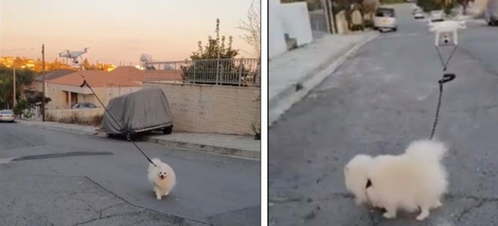 Psa wyprowadził dron - spacery w czasach pandemii